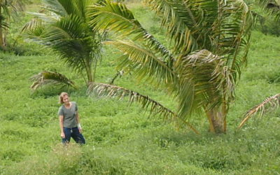 Tei Tei Taveuni: Sustainable Farming